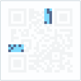 The version information signifies the QR Code version that is being used